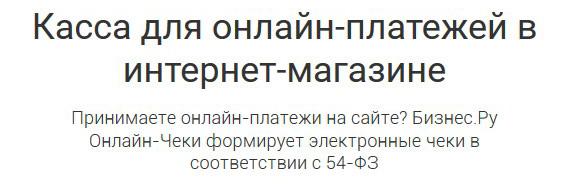 Онлайн чеки от Бизнес.ру