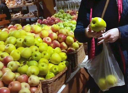пересорт яблок